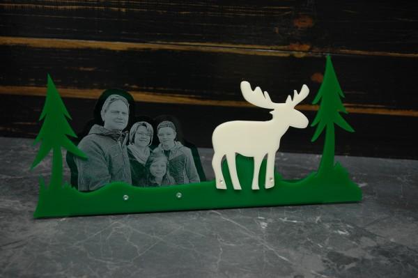 Acrylglas Wald mit Elch inkl. Fotogravur